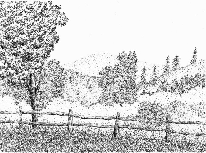 Vermont Reflection by Bob Marrone, Pen and ink on Paper