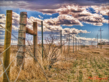 Field of Lines by Paul Maynard, Photo Art on Canvas