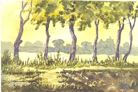 Trunk fow in a Farm by Rizwan Ajmerwala, Watercolour on Paper